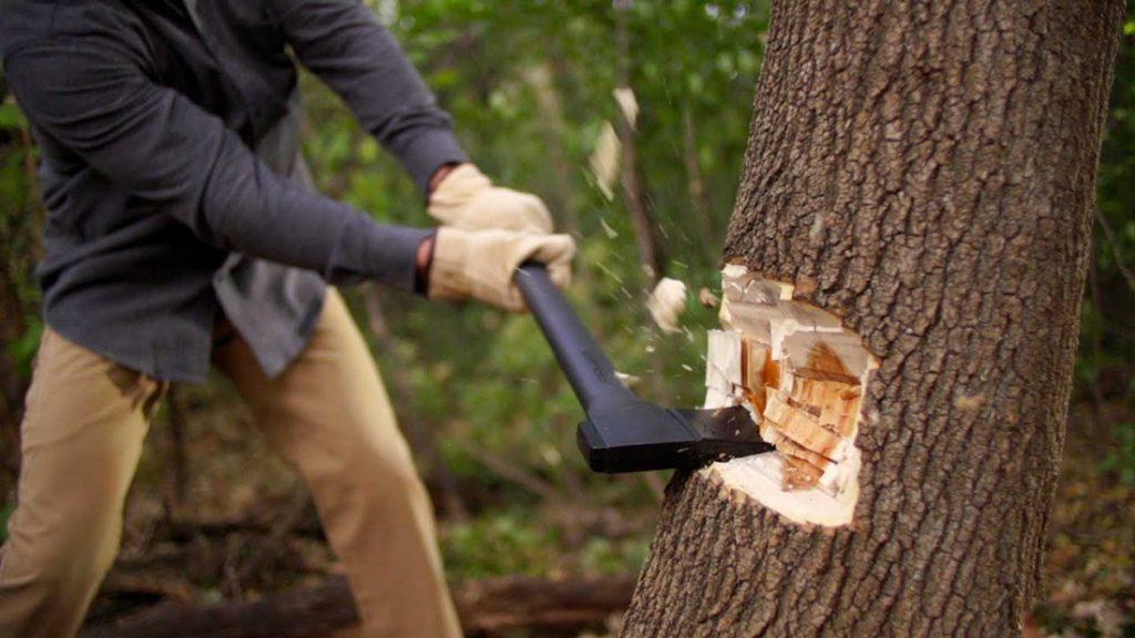axe cutting trees 2